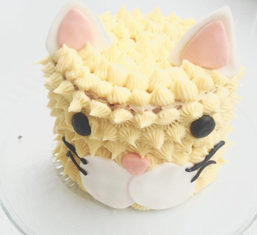 Gâteau d'Anniversaire #11